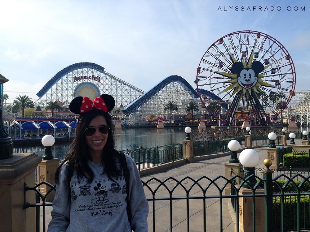 Los Angeles sem Carro - Disneyland Anaheim Califórnia