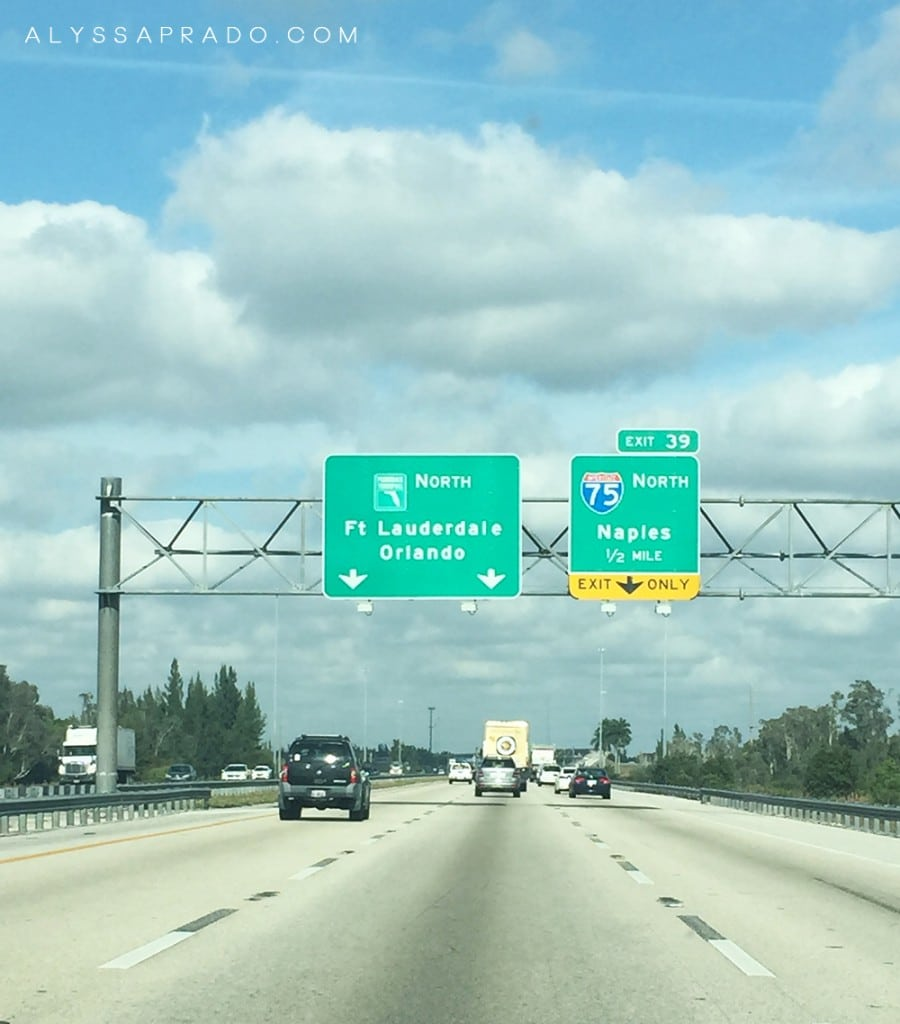 Dicas para Economizar na Disney - Voe para Miami