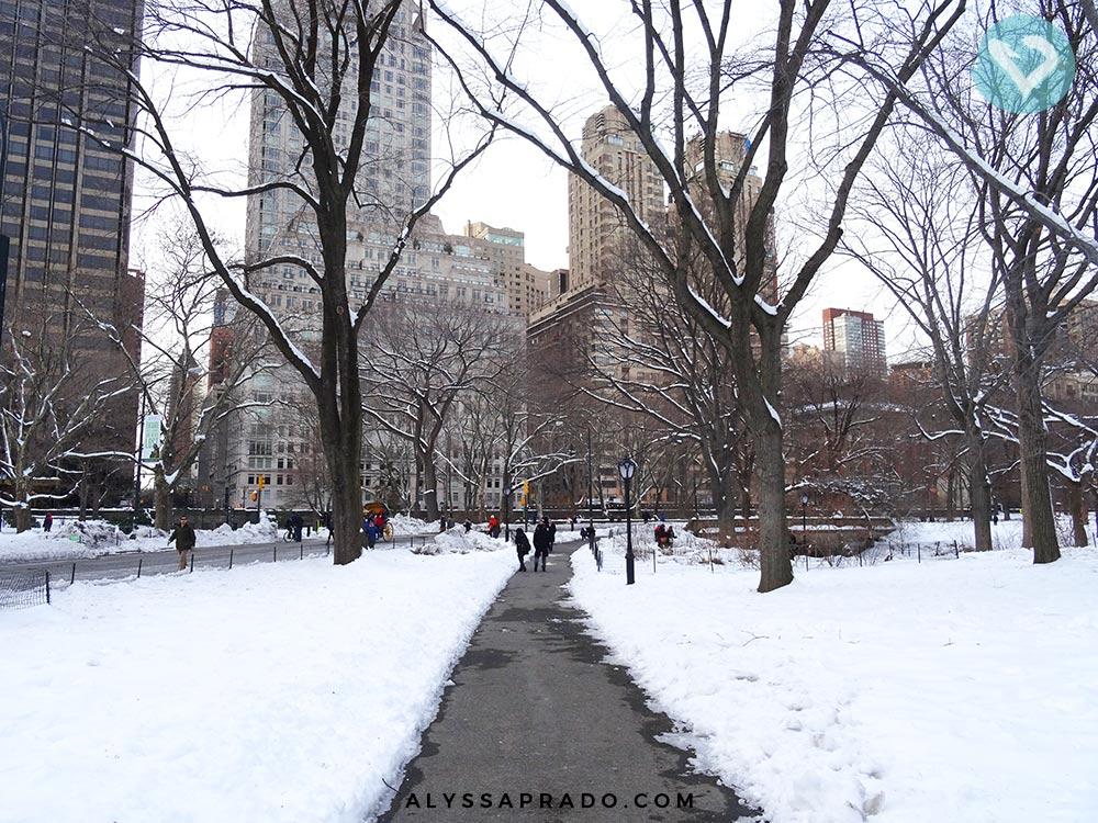 Olha o Central Park, todo branquinho! É assim que fica Nova York no inverno. Clique no link e leia como foi a minha experiência!