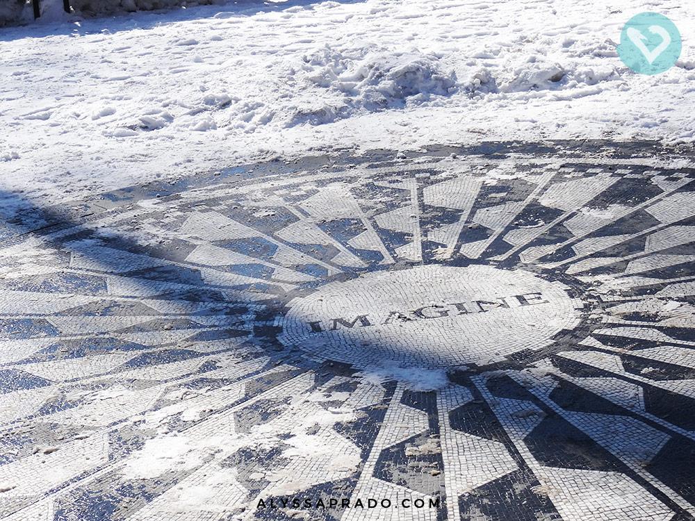 Já imaginou se vale a pena visitar Nova York no Inverno, com toda essa neve? Clique no link e veja como foi a minha experiência!