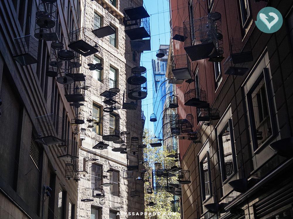 Uma rua cheia de gaiolas tocando as melodias que os pássaros da cidade cantavam. Essa é a proposta do Forgotten Songs, um dos principais pontos do Walking Tour Grátis em Sydney! Clique no link para ler mais sobre!