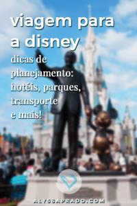 Aprenda a planejar uma viagem para a Disney! Dicas de transporte, hospedagem, parques, documentos e mais!