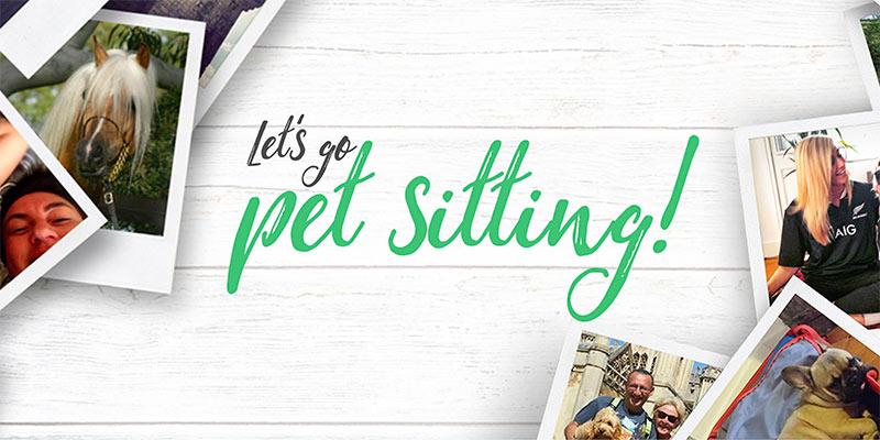 Com o Trusted Housesitters você cuida da casa e dos animais de pessoas no seu destino! Descubra mais sobre essa forma alternativa de hospedagem e como viajar barato pelo mundo nesse post!